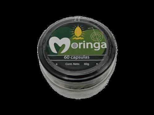 Capsula de Moringa Stevia México