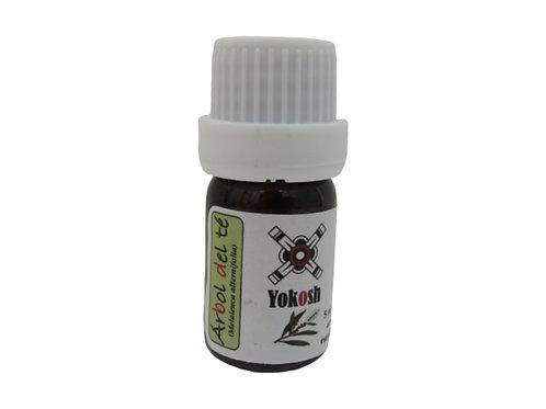 Aceite esencial árbol del te