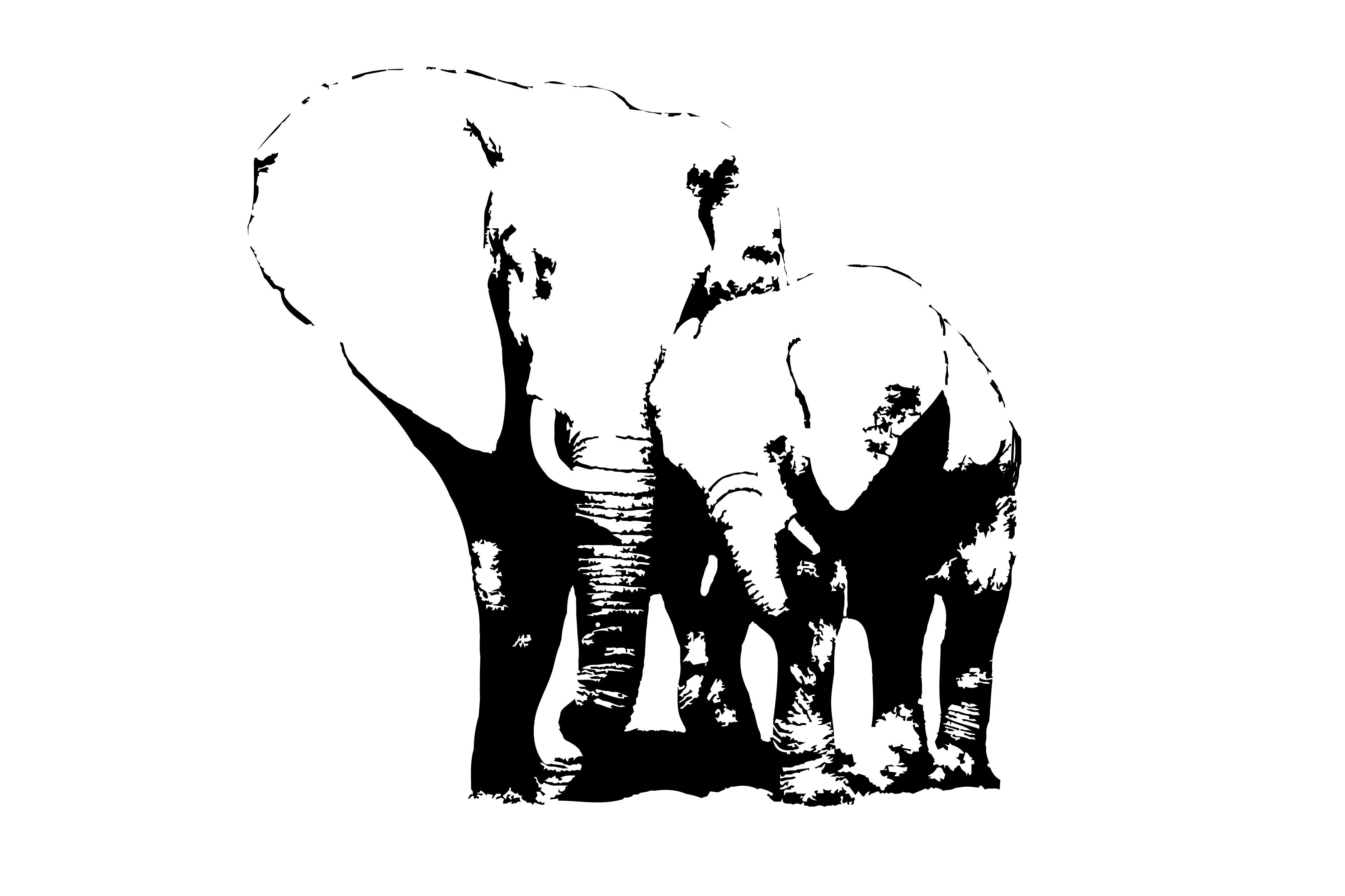 White Space Elephant