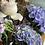 Thumbnail: Kanku seasonal bouquet - blues, lilacs 'n' violets