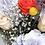 Thumbnail: Kanku weekly bouquet : Kloss edition