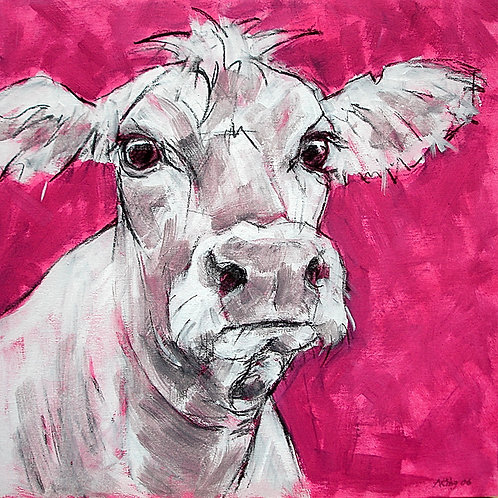 Cow Canvases
