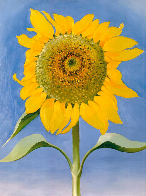 Sunflower New Mexico Art Print by Georgia O'Keeffe