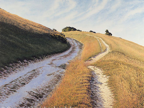 Chalk Path II Limited Edition Print by Michael Embden
