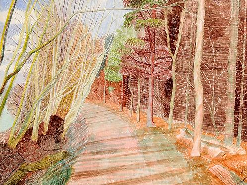 Larchwood Print by Edward Bawden