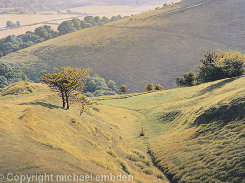 South Downs Print by Michael Embden