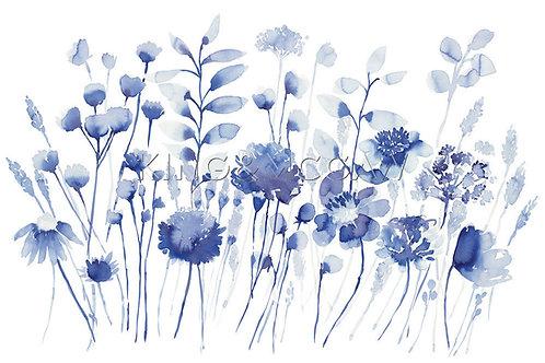 Corran Canvas by Bluebellgray