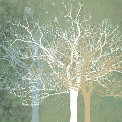 Quiet Forest Canvas Print by Erin Clark