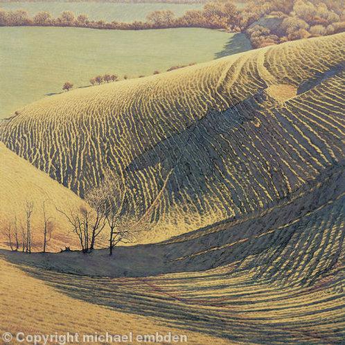 Hill Shadows Print by Michael Embden