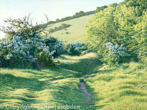 Spring Path Limited Edition Print by Michael Embden