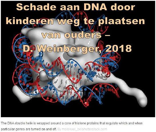 DNAschade-Weinberger.JPG