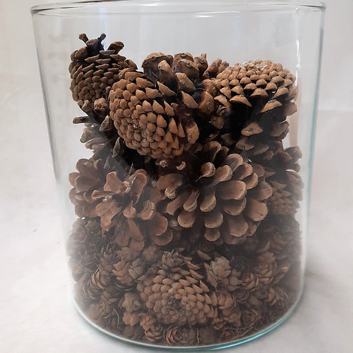 Clear Vase with Pine Cones