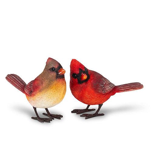 Standing Cardinal