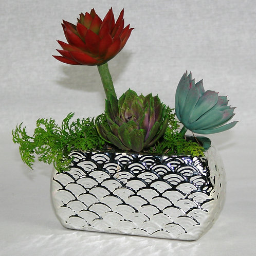Chrome Vase with Succulents
