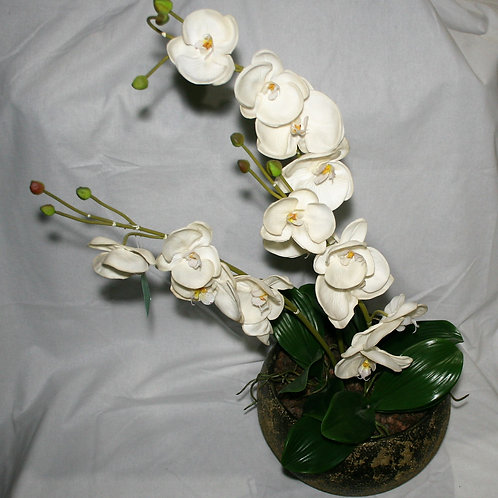 Large Green Pot with Orchids
