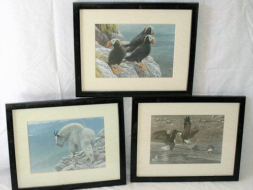 Set of 3 Robert Bateman Prints