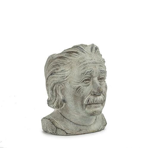Small Einstein Head Planter