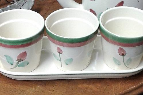 Ceramic Tray with 3 Plant Pots