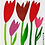 Thumbnail: Swedethings Swedish Dish Cloth - Tulips