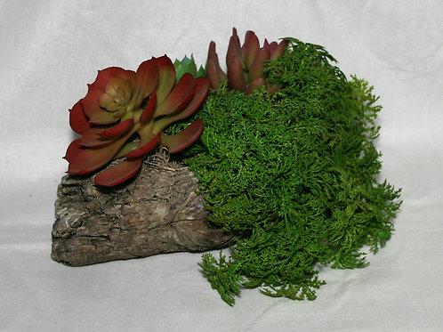 Ceramic Log with Succulents