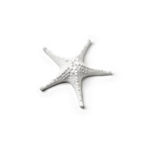 Mini 3D Starfish