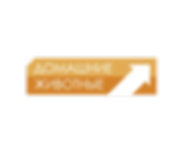 LOGO_DJE-01 (1).png