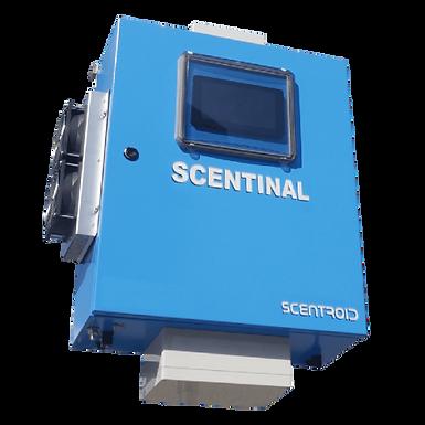SL50 SCENTINAL