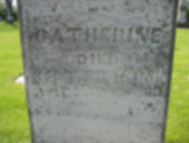James Fagan, James Fagin, Cathering Fagin, Catherine Fagan, St. Patrick Cemetery, Lake Forest, Illinois