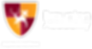 braunton-academy-logo.png