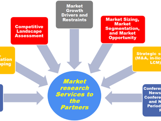 Our Market Research Capabilities