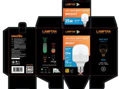 LED-High-Watt_T-Bulb-Bright_25w_gbox_DL.