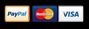 metodos de pago Icono.png