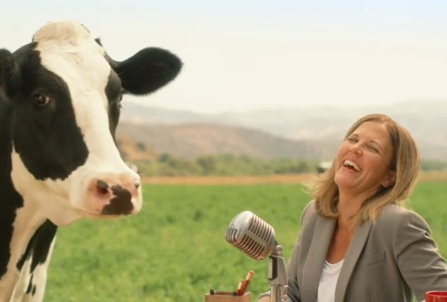 """Chick Fil A """"Cow Appreciation Day-Just Standing"""""""