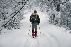 Winter snow offers great cross country ski opportunities on the mountain trails.