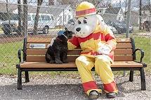 Duryea Dog Park 1.JPG
