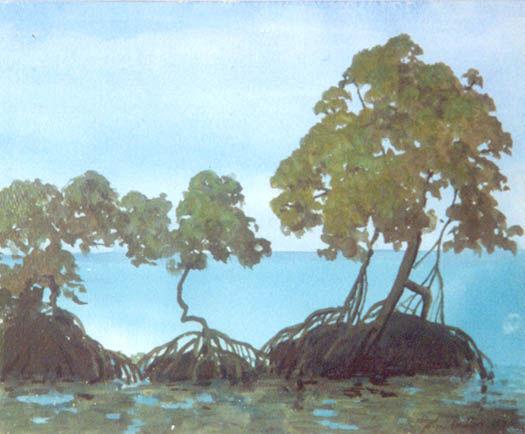 TreesWB.jpg