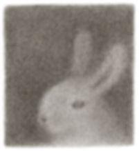 bunny25.jpg