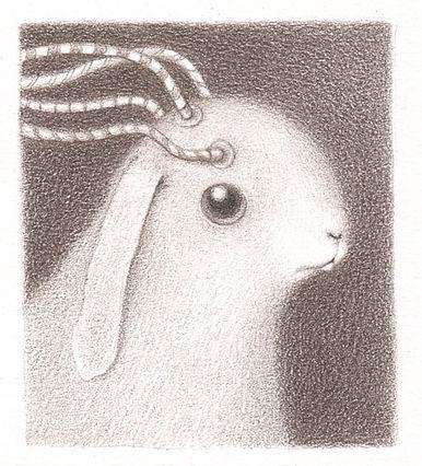 bunny12sm.jpg