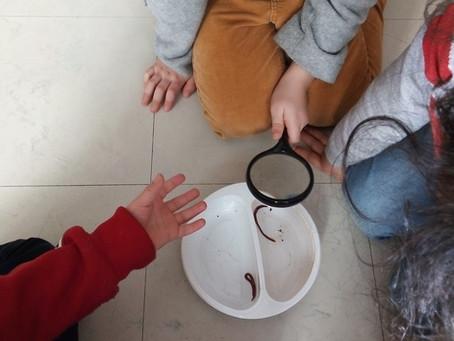 """Intervention de """"Bobo planète"""" pour les maternelles"""