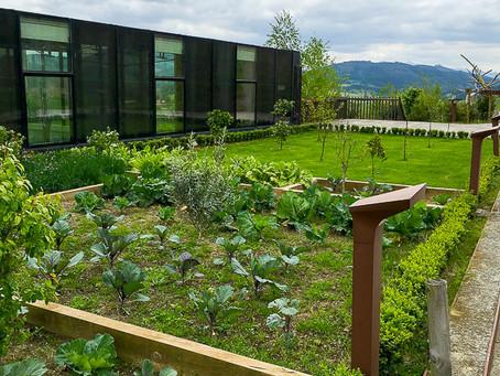 Энеко Атча, коротко про сады Azurmendi