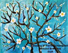 Almond Branches