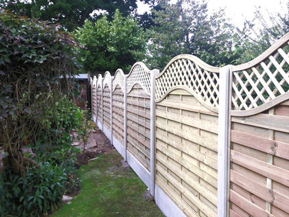Featherhedge fencing clent