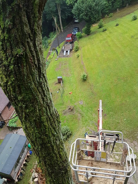 Eastleigh Arborists are one of the best highly skilled tree surgeons in the Romsley area. From Crown Reduction, Crown Thinning, Tree Felling, Stump Grinding to Emergency call out Service, we are able to offer a professional service to both residential and commercial customers.