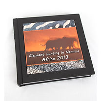 """Click here to see the designs from Jim's 10""""x10"""" -40 pages Safari Photo Book"""