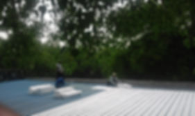 Sloping Roof Insulation Layer 1.jpg