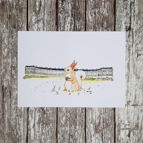 Somerset wildlife squirrel print – Alex T Sykes