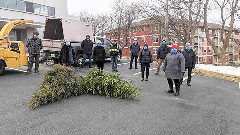 January Tree Chipping.jpg