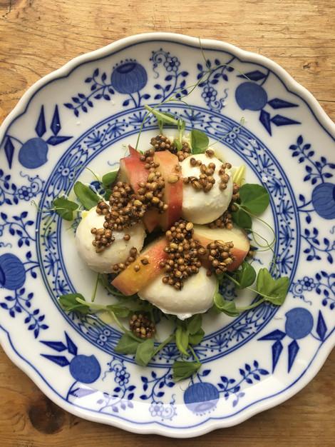 Burrata, white peach & coriander seeds