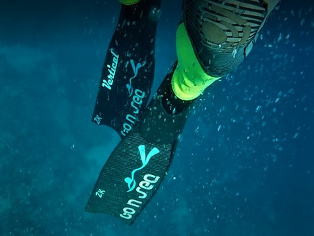I tested the new Go N Sea Vertical bifins... and they are awesome!!!