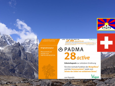 """From the Himalayas to the Depth of the Sea... the Tibetan formula """"Padma 28 Active"""" (test review)"""